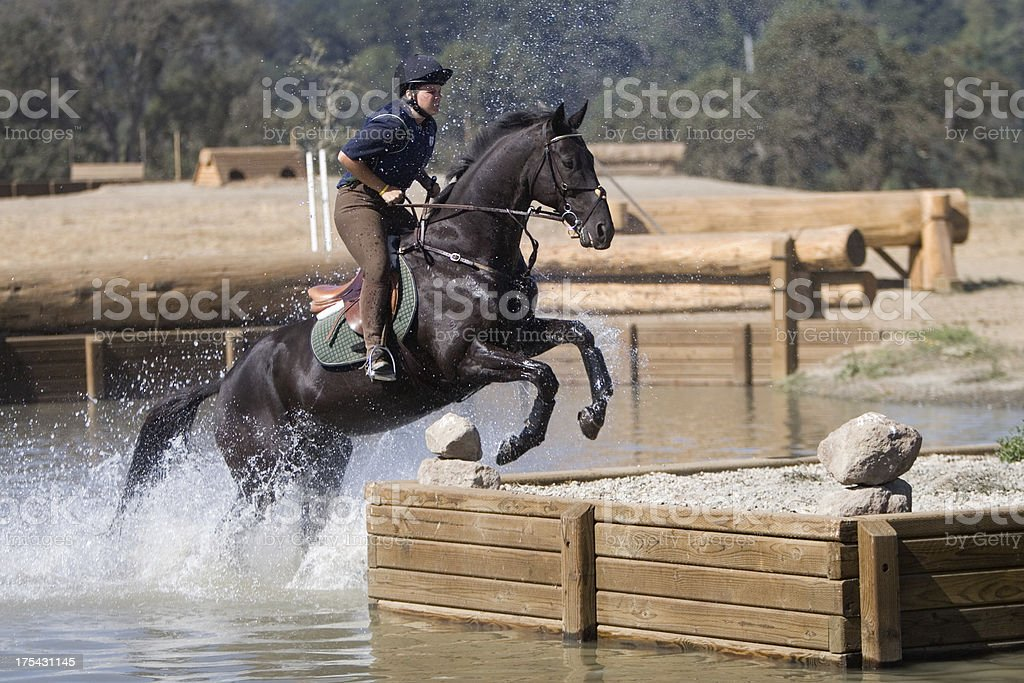 Polaris Horse stock photo