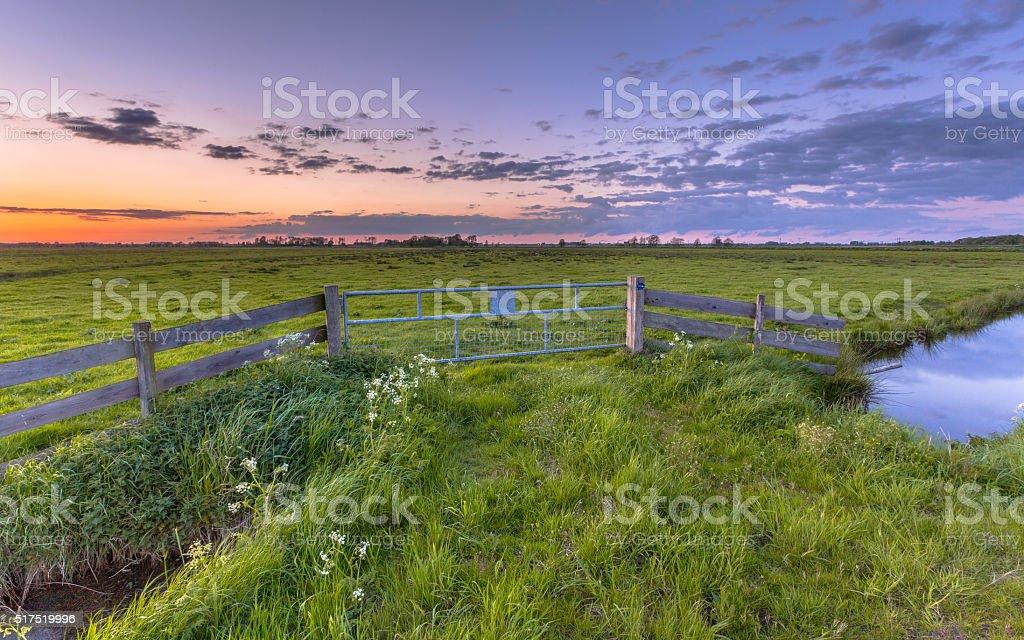 Polder landscape sunset stock photo