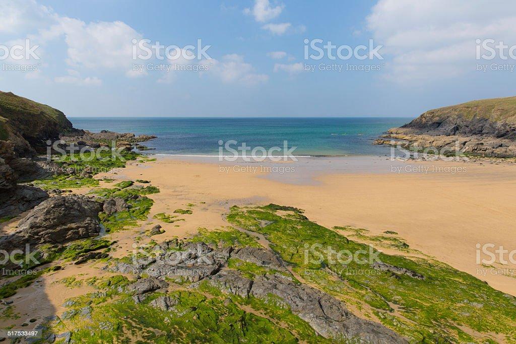 Poldhu beach south Cornwall England UK Lizard Peninsula near Mullion stock photo