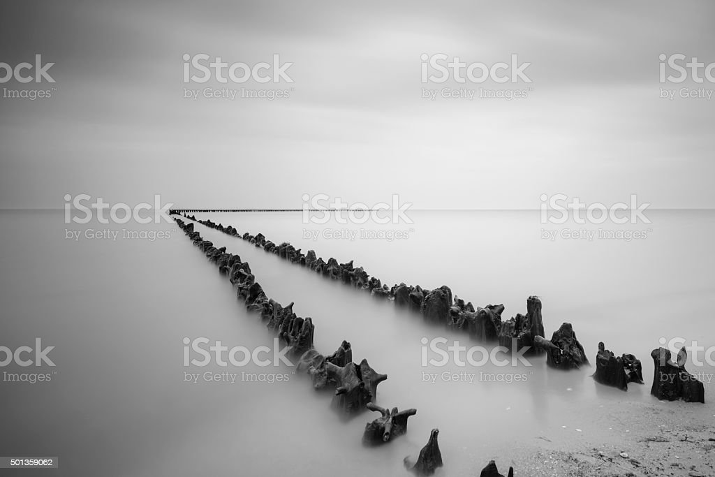 Poles at the beach in black and white stock photo