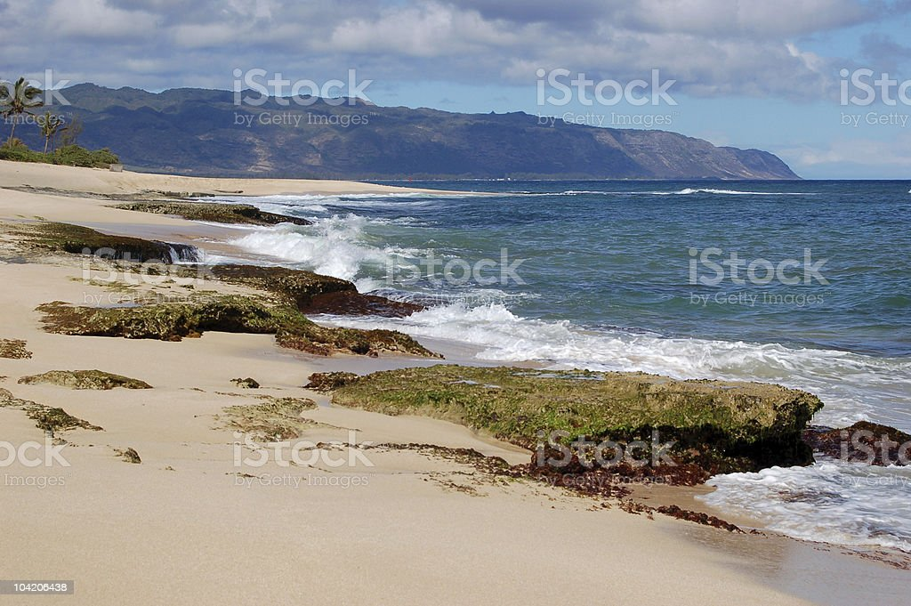 Police beach 2 royalty-free stock photo