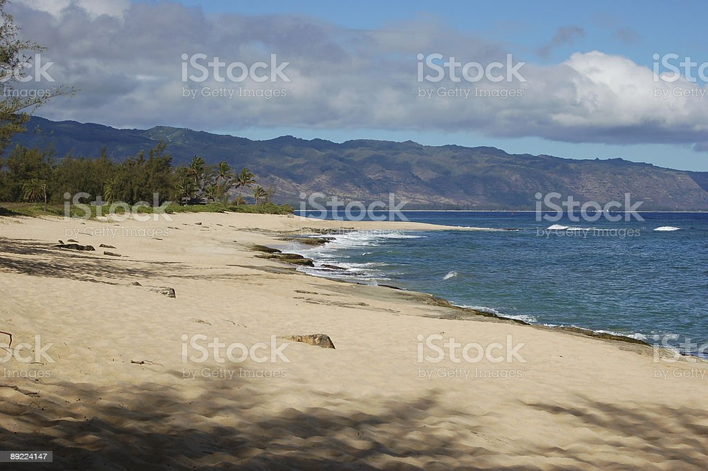 Police beach royalty-free stock photo