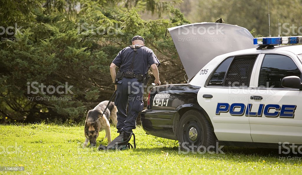 Police Dog royalty-free stock photo