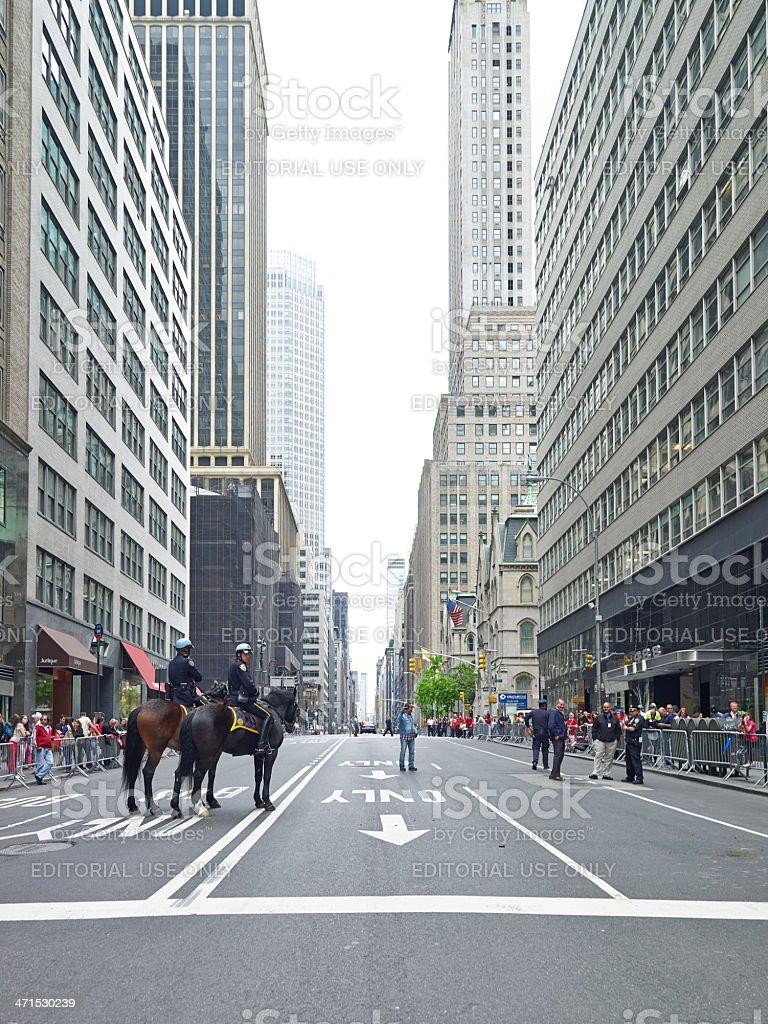 NYPD Police Horses at Turkish Day Parade stock photo