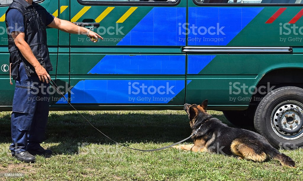 Police man with his dog stock photo