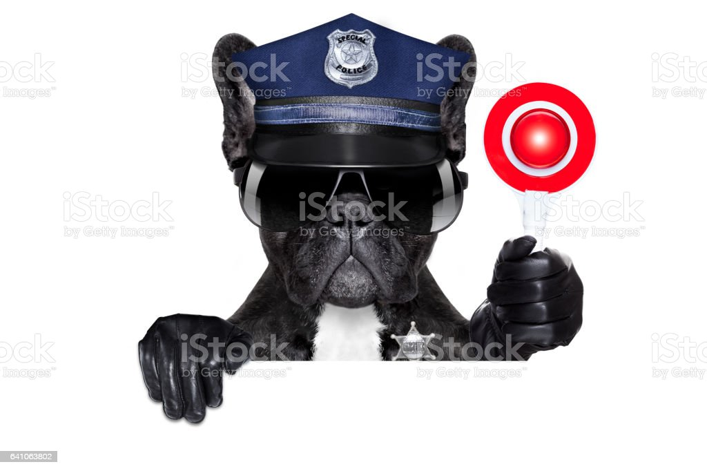 policeman dog with stop sign stock photo