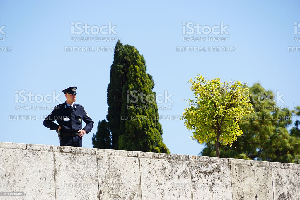 Policeman working at Greek Parliament  in Athens,Greece. stock photo