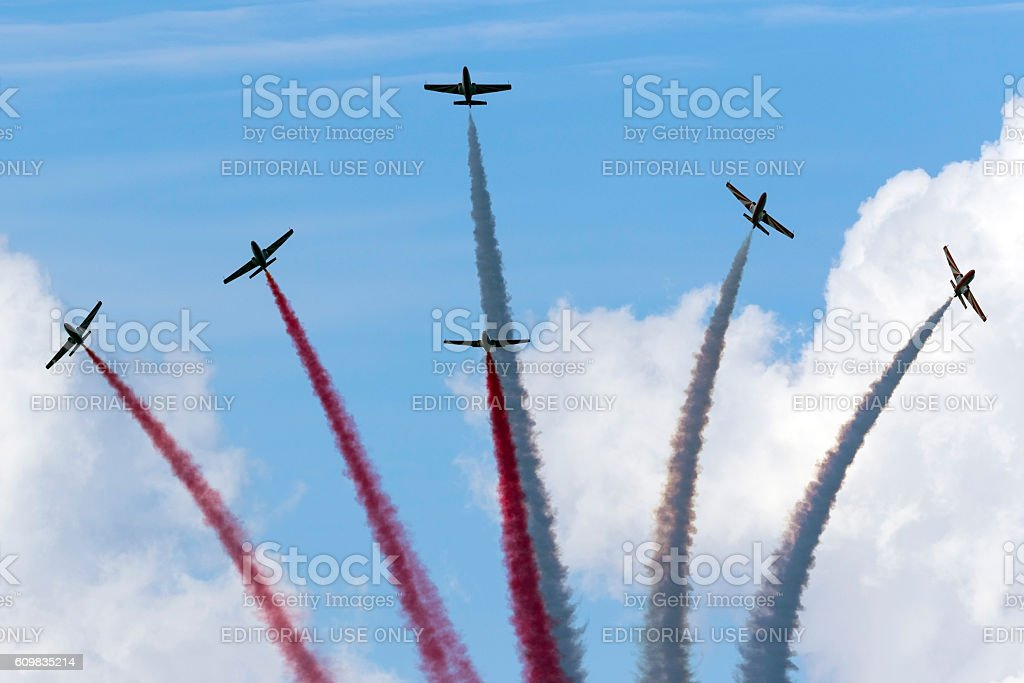 Polish Air Force Display Team performance stock photo