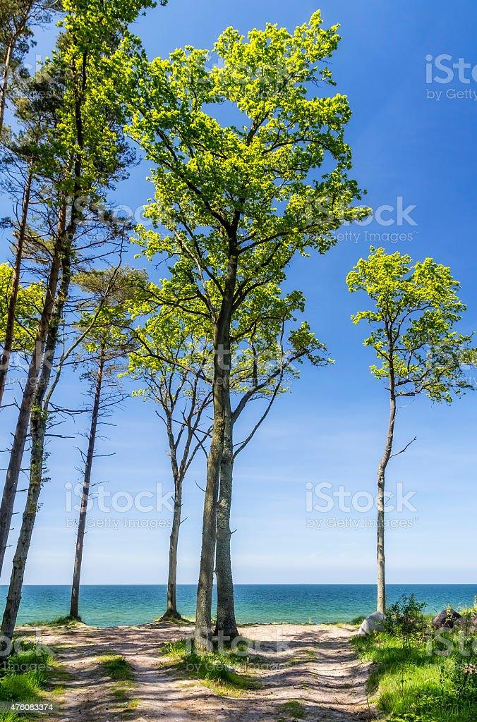 Polish seashore, Baltic sea stock photo