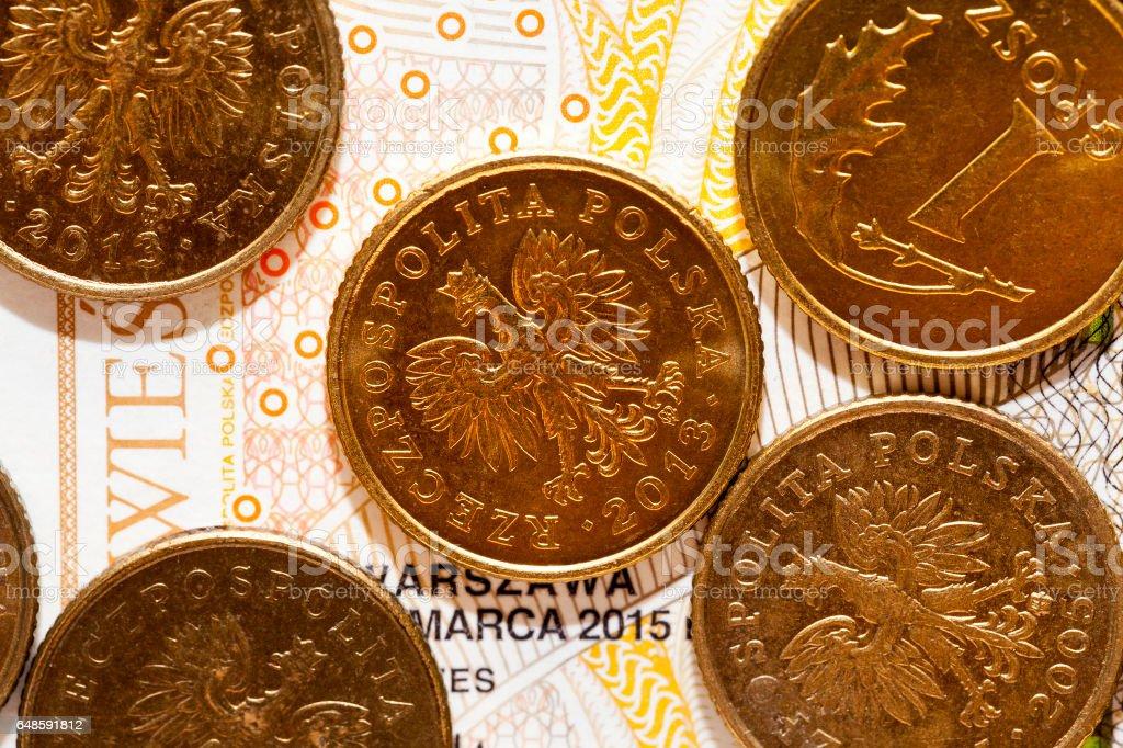 Polish Zloty, close-up stock photo
