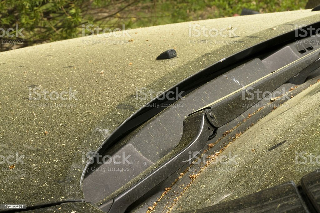 Pollen Covered Car royalty-free stock photo