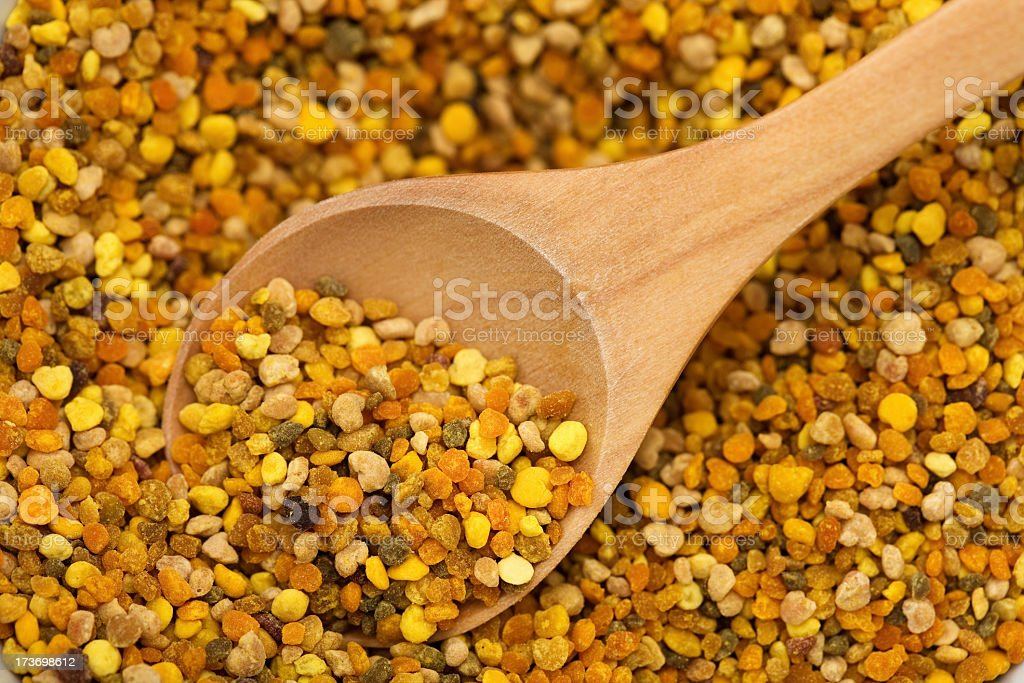 Pollen Grain stock photo