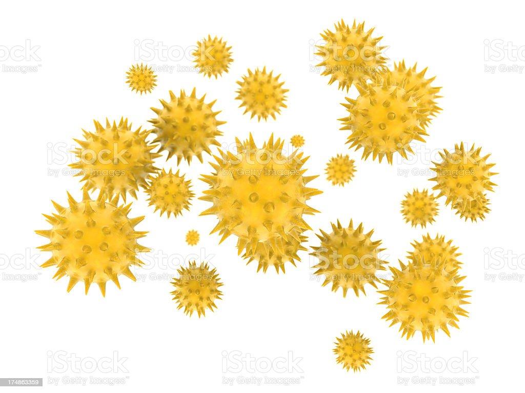 Pollen Grains royalty-free stock photo