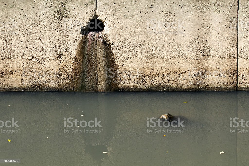 Polluted canal by house waste water royalty-free stock photo