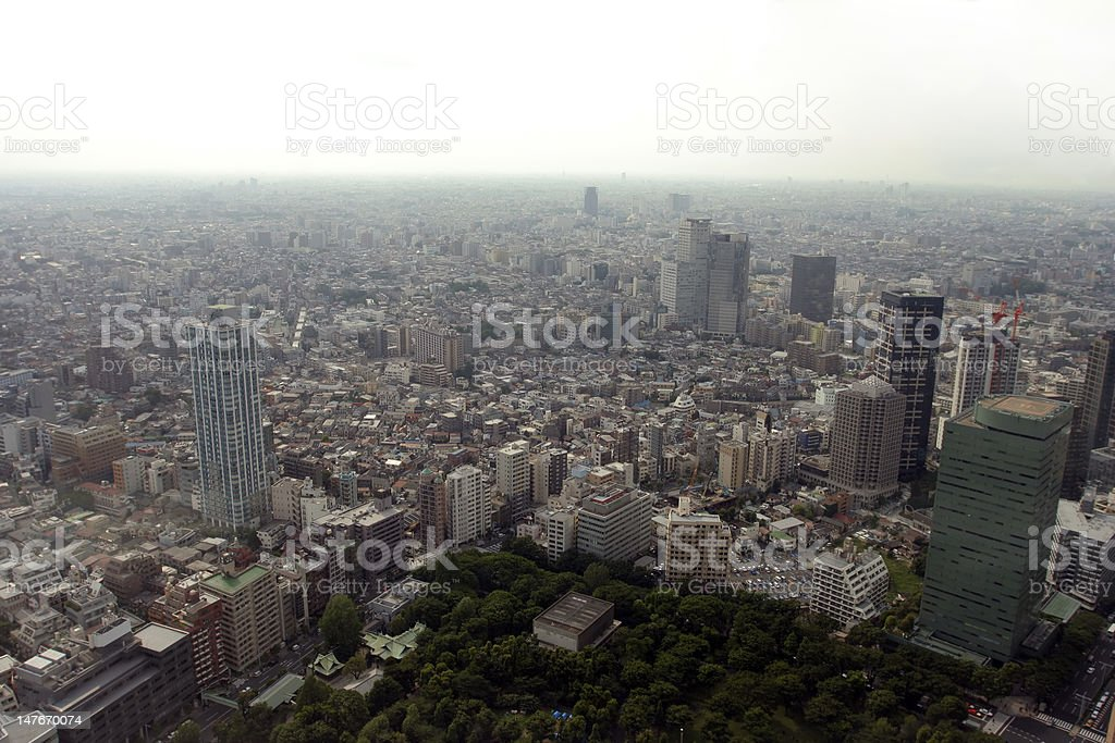 Polluted modern megalopolis viewed from the air royalty-free stock photo
