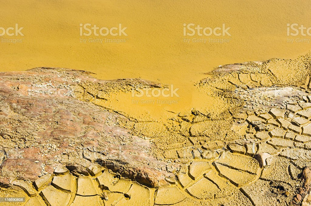 Polluted water detail royalty-free stock photo