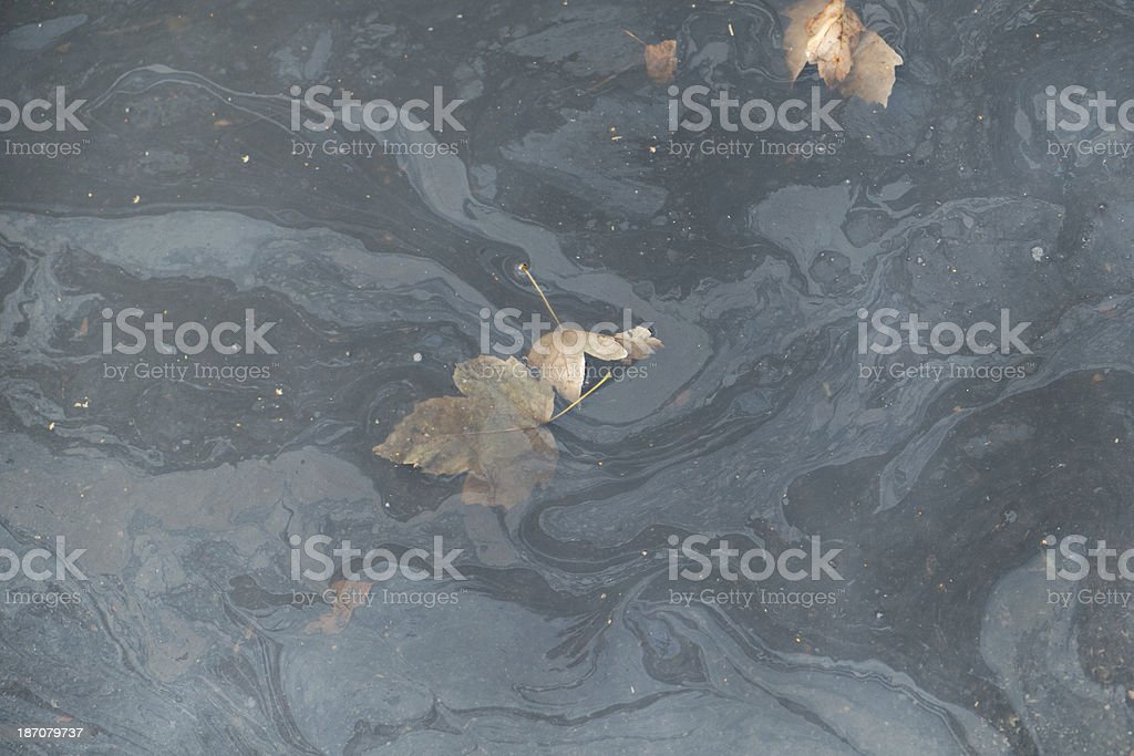 Polluted water royalty-free stock photo