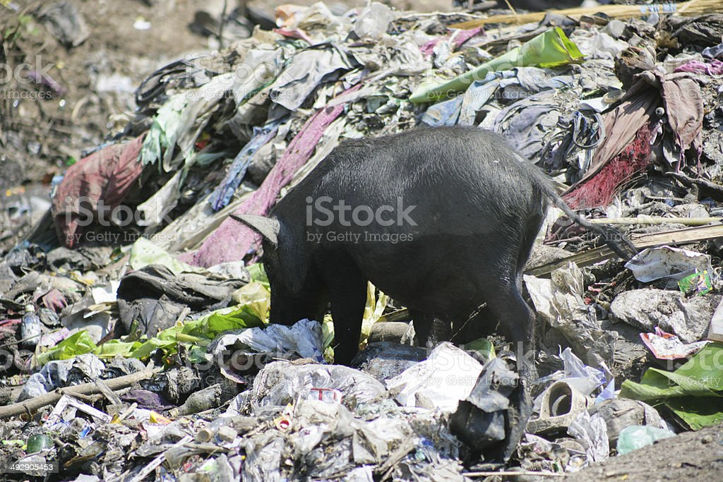 Pollution in India stock photo