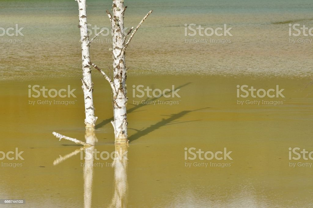 Pollution of a lake with contaminated water from a gold mine stock photo