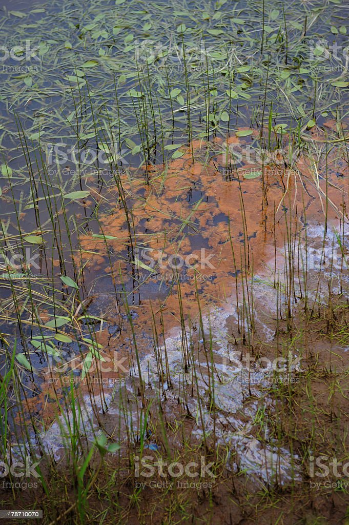 Pollution of nature stock photo