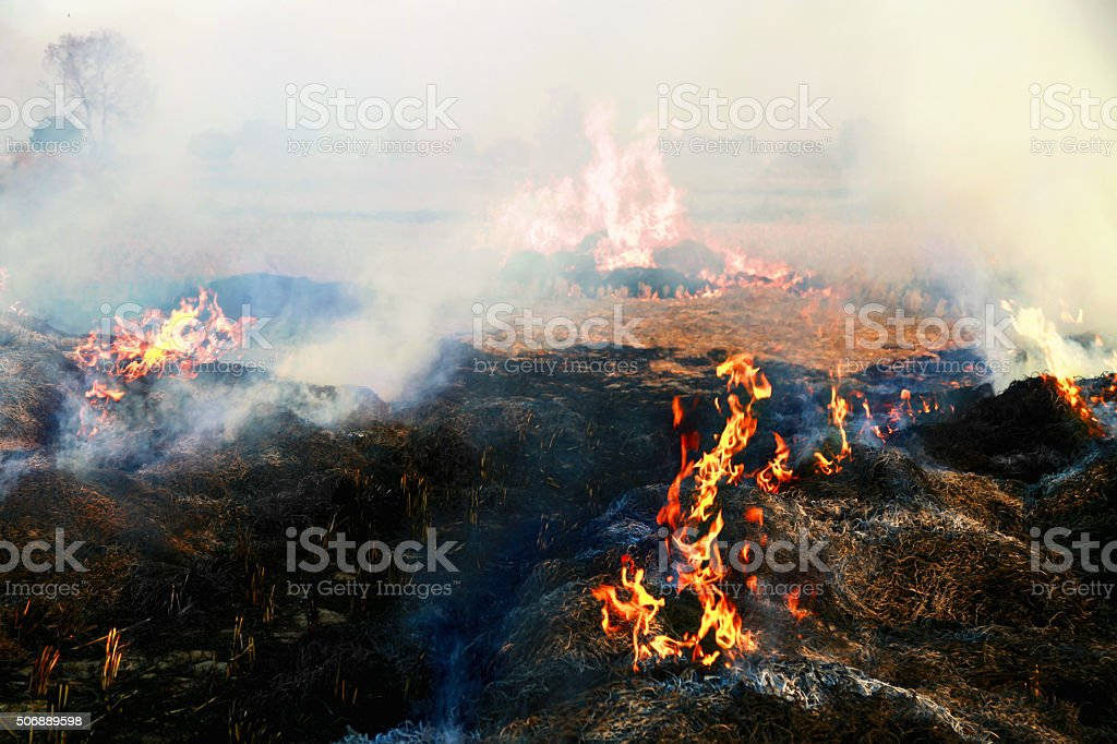 Pollution stock photo