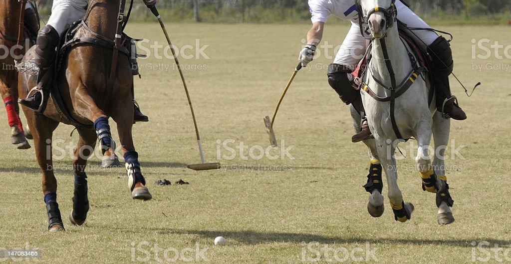 match de Polo photo libre de droits