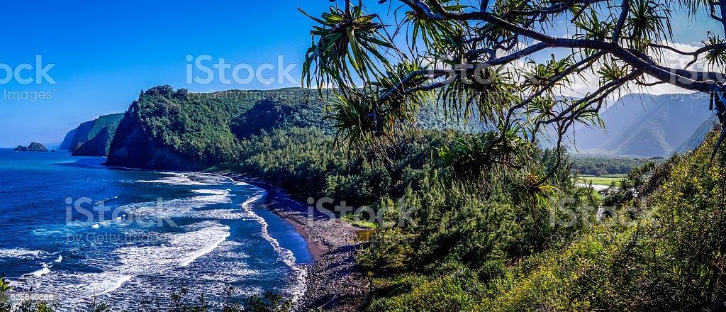 Pololu Valley Hawaii Panorama stock photo