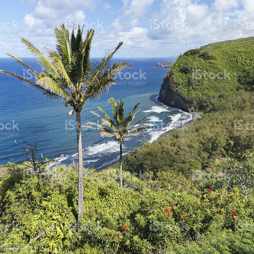 Pololu Valley royalty-free stock photo