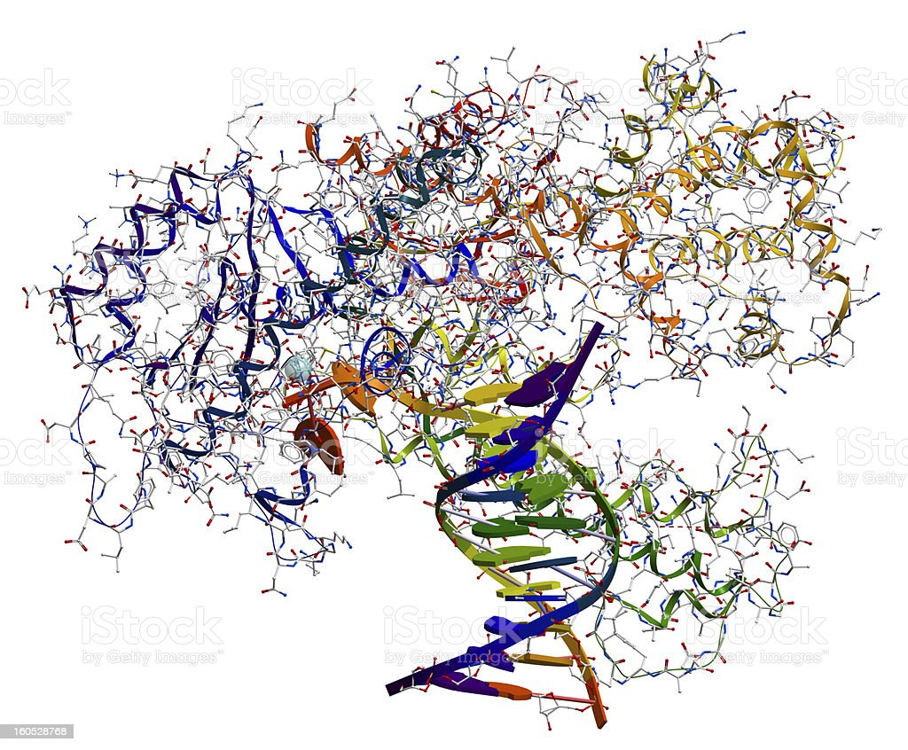 DNA polymerase I. stock photo