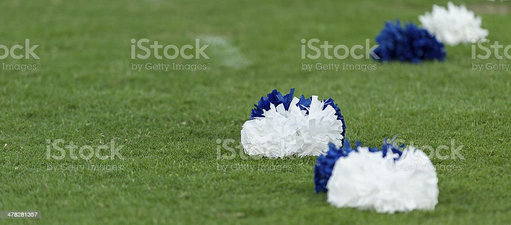 Pom poms on grass field royalty-free stock photo