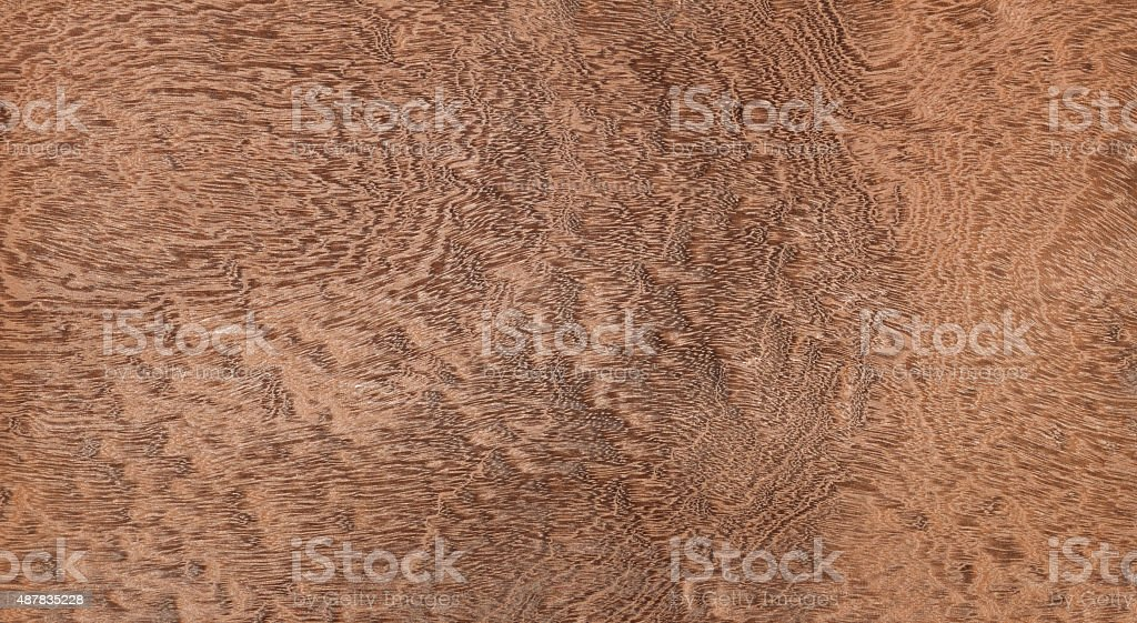 Pommele mahogany. stock photo