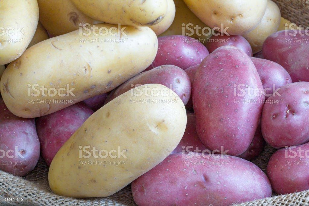 Pommes de terre rouges et blanches   sur toile de jute stock photo