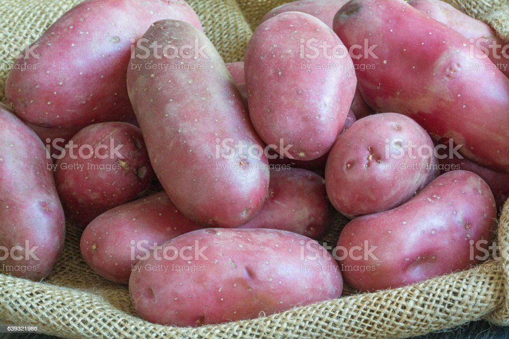 Pommes de terre rouges  sur toile de jute stock photo