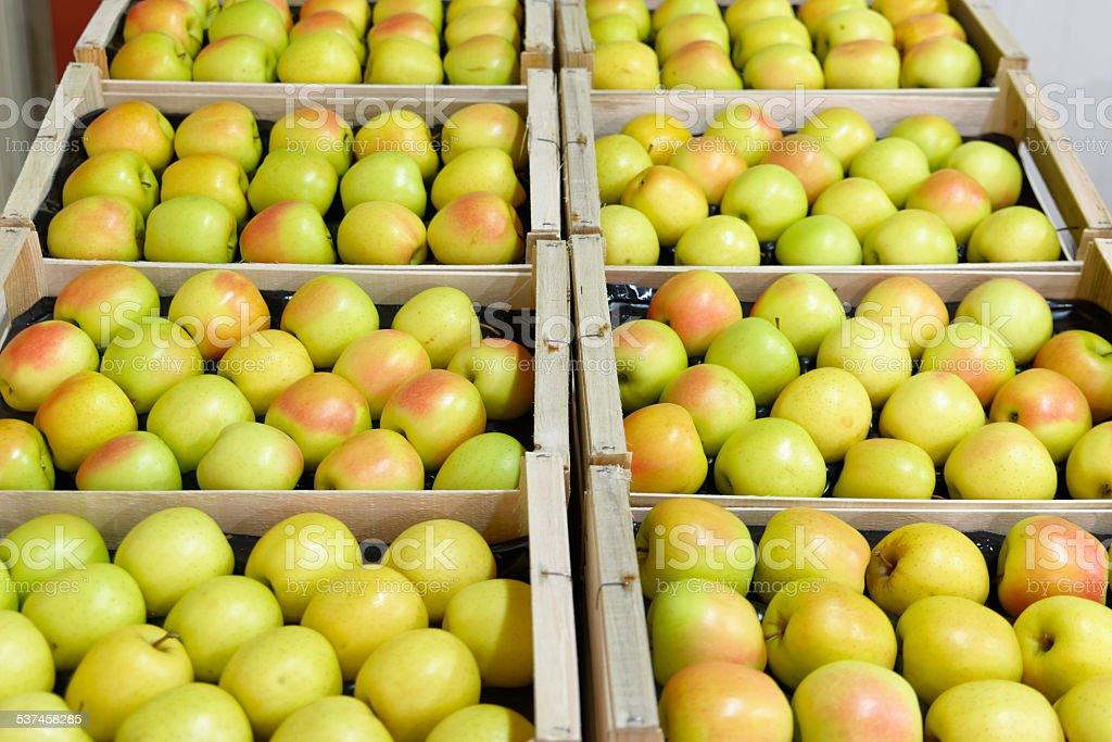 pommes ? profusion dans des caisse en bois stock photo