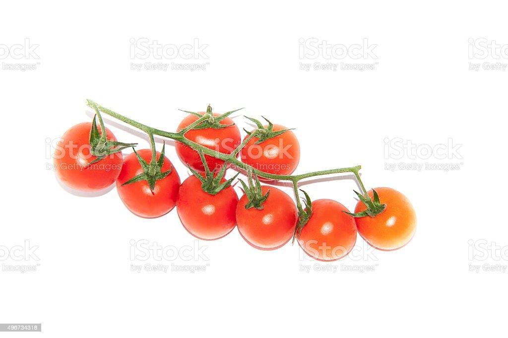 pomodorini stock photo