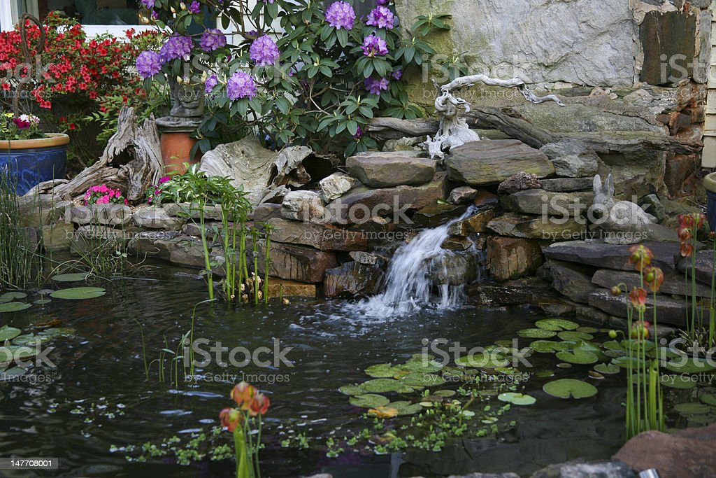 Pond and Waterfall royalty-free stock photo