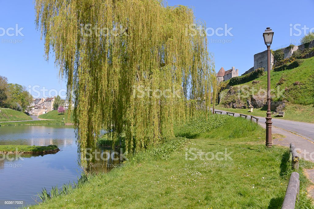 Pond at Falaise in France stock photo