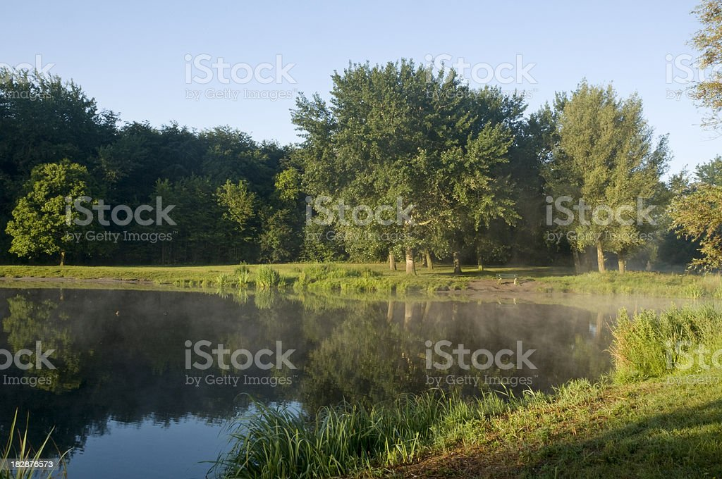 Pond in a Park royalty-free stock photo