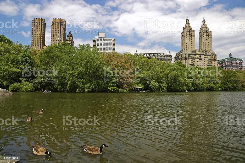 Pond in Central Park royalty-free stock photo