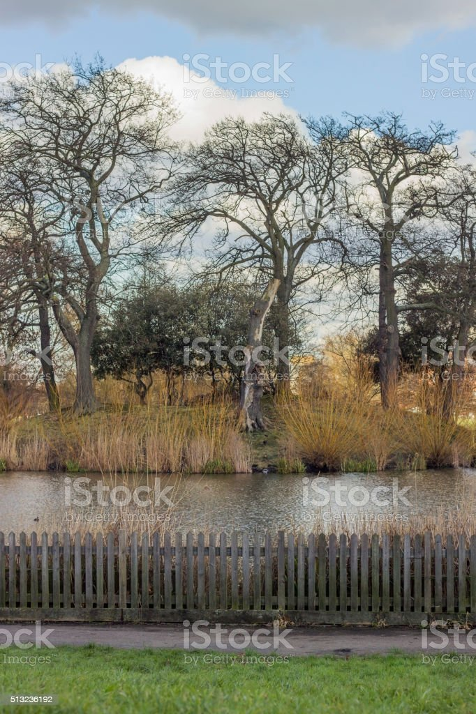 Pond in Clapham common in London stock photo