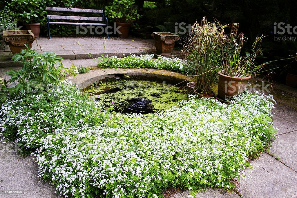 Pond in formal garden stock photo