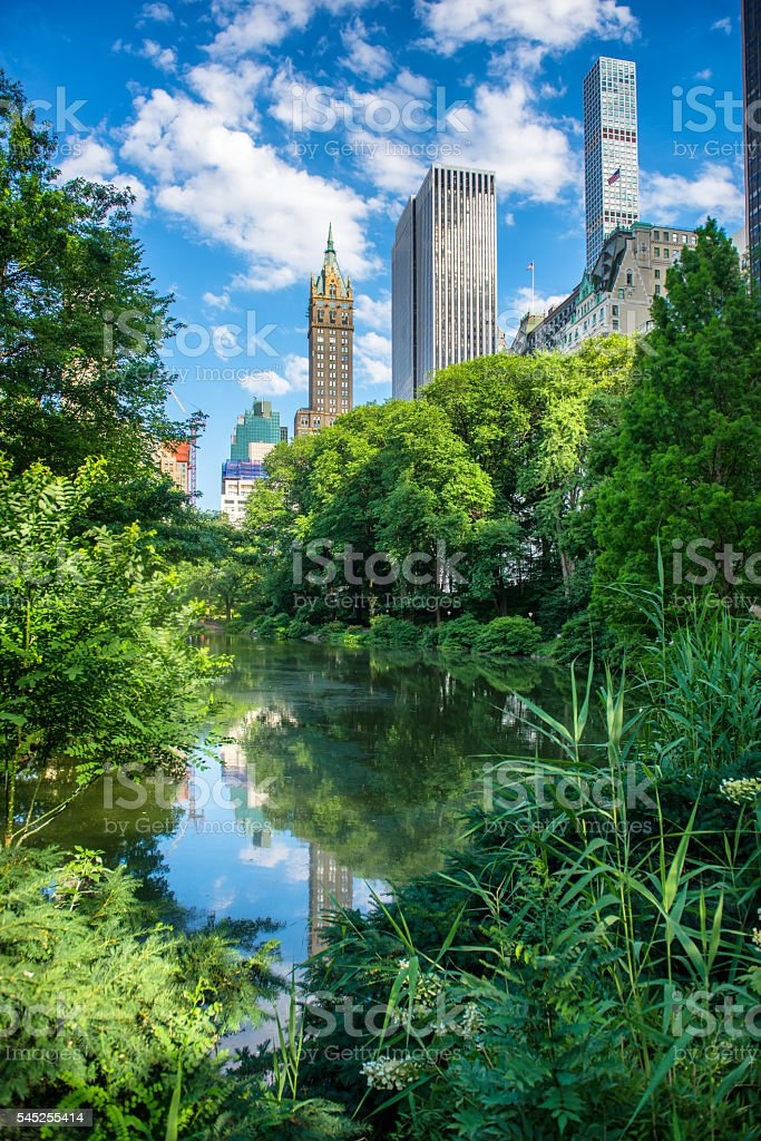 Pond in New York City Central Park at summer stock photo