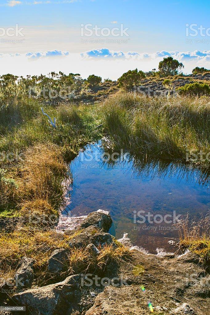 Pond in Reunion Island, Roche ecrit ascension stock photo