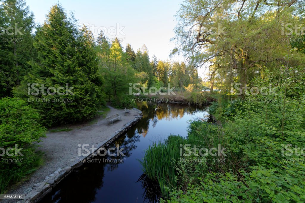 pond in Stanley Park, Vancouver, BC, Canada stock photo