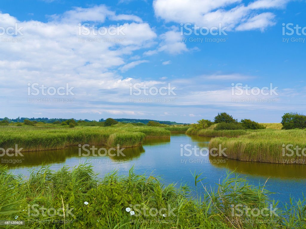 pond in the fen stock photo