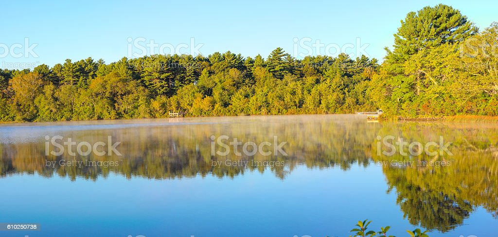 Pond Mist in the Early Morning stock photo