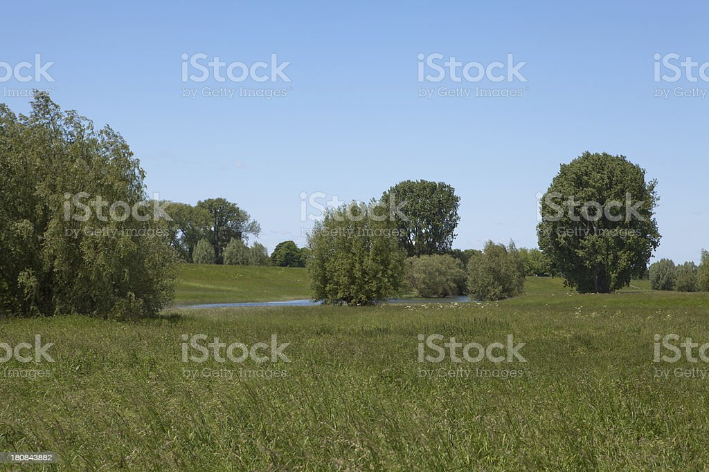 pond on the meadows royalty-free stock photo