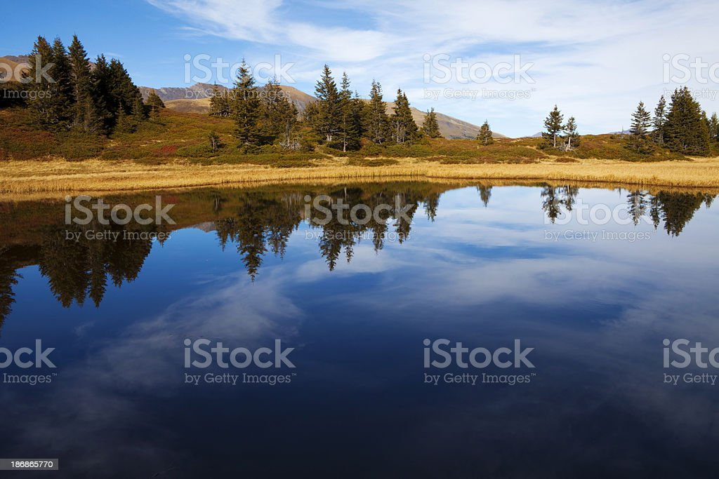 Teich royalty-free stock photo