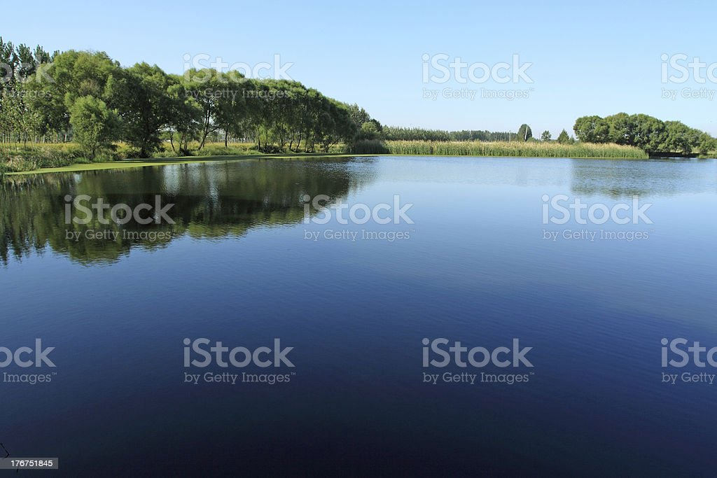pond scenery royalty-free stock photo