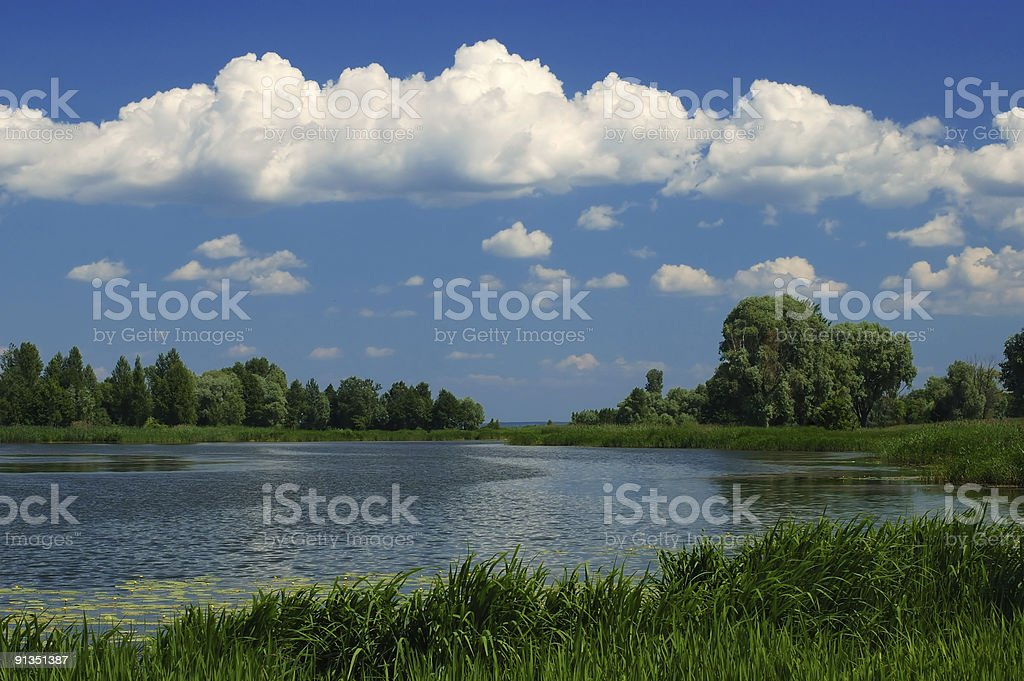 Pond Scenic royalty-free stock photo